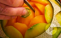 Cantaloupe Melon